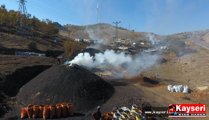 Meşe ağacının mangal kömürü olma yolculuğu