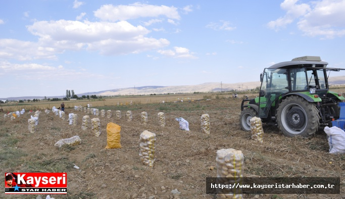 Kayseri patates üretiminde 4. il