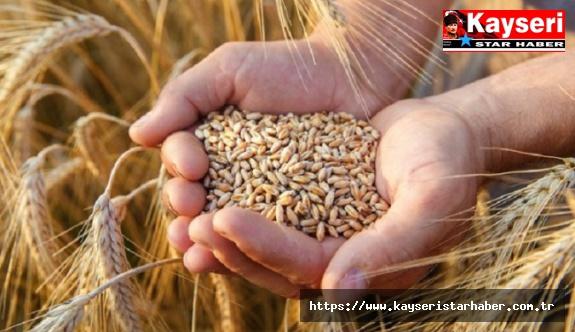 Gıda ve Tarımda Öne Çıkanlar