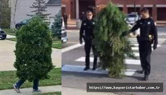 Sırbistan'da sokağa çıkma yasağını delen kişi bakın nasıl yakalandı