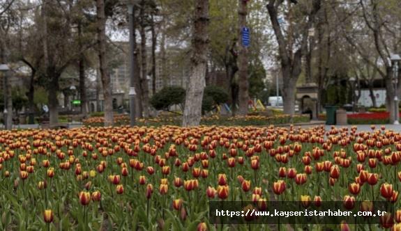 Bahar, Büyükşehir ile daha güzel
