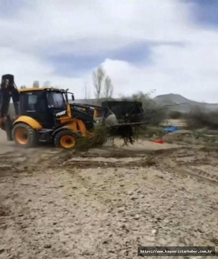 Çiftçi, don vuran ağaçlarını söktürdü