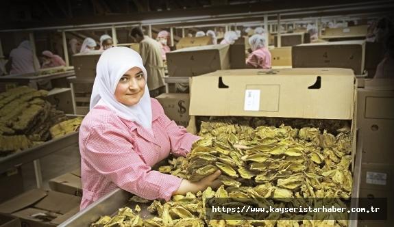 EİB ihracatında tarım ve maden yükselişte