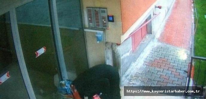 İldem'i ayağa kaldıran kadın serbest bırakıldı