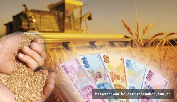 Tarımsal Girdi Fiyatları arttı