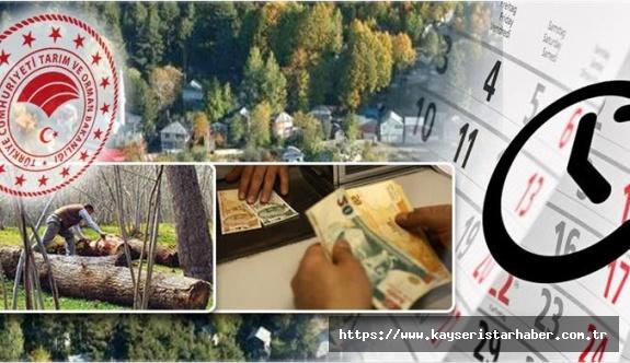 Orman köylü ve kooperatiflerinin kredi taksitleri 3 ay ertelendi