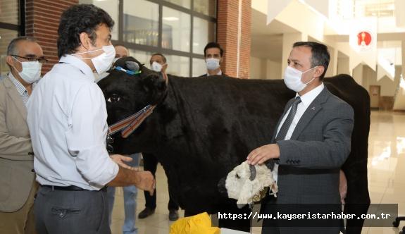 ERÜ Rektörü Çalış, Hayvan Simülatörlerini İnceledi