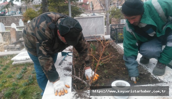 Develi Belediyesi Ekipleri Şehit Mezarlarını Çiçeklerle Süsledi