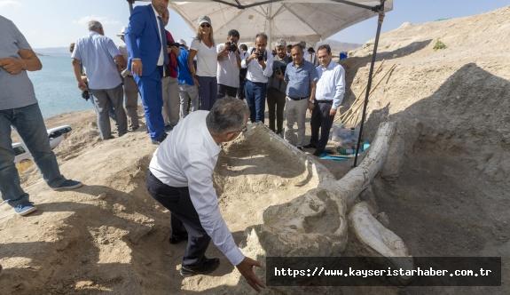 Kayseri'nin fosilleri dünyanın ilgisini çekiyor