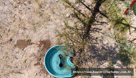 Büyükşehir İle Daha Az Su Tüketimi Daha Fazla Yeşil Alan