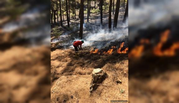 Kayseri Şeker, Aladağlar Milli Parkı'ndaki Yangın İçin Seferber Oldu