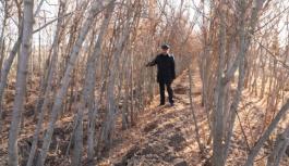 Kocasinan'da hedef; 100 bin ağaç dikmek