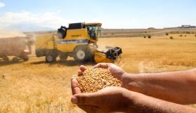Boş araziler tarıma kazandırılıyor